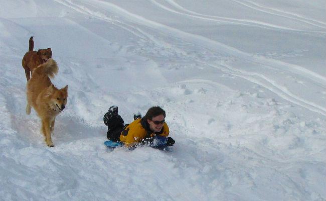 No sin mi perro: esquiar con animales