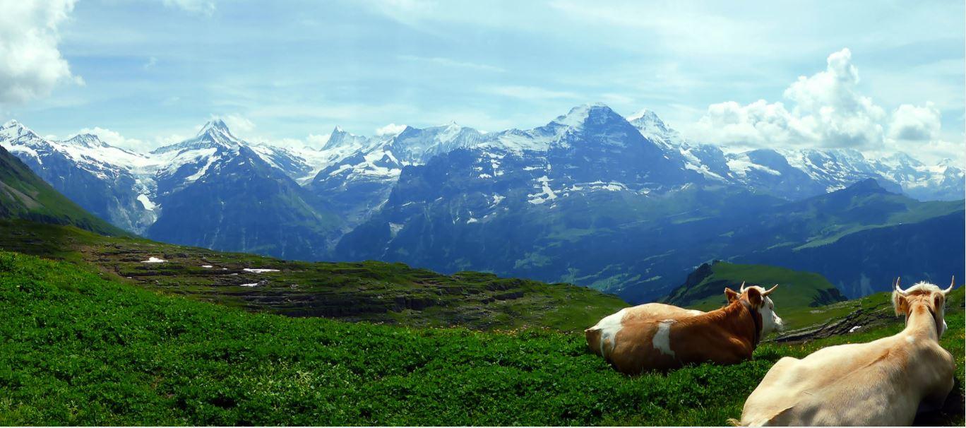 Las zonas de esquí suizas permanecen abiertas