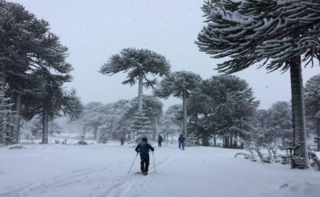 Fechas de apertura de los principales centros de esquí chilenos